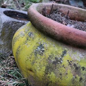 garteling.at Gartenblog Österreich Cecerle Tontöpfe