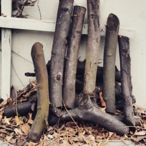 garteling.at Gartenblog Österreich Cecerle Gartenobjekt