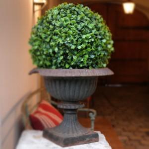 garteling.at Gartenblog Österreich Cecerle Buxbaum