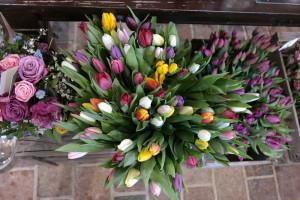 garteling.at Gartenblog Österreich Cecerle Tulpen unverblümt