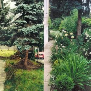 Garten_VorherNachher