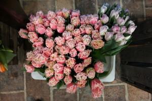 Blumenwerkstatt unverblümtgarteling.at Gartenblog Österreich Cecerle