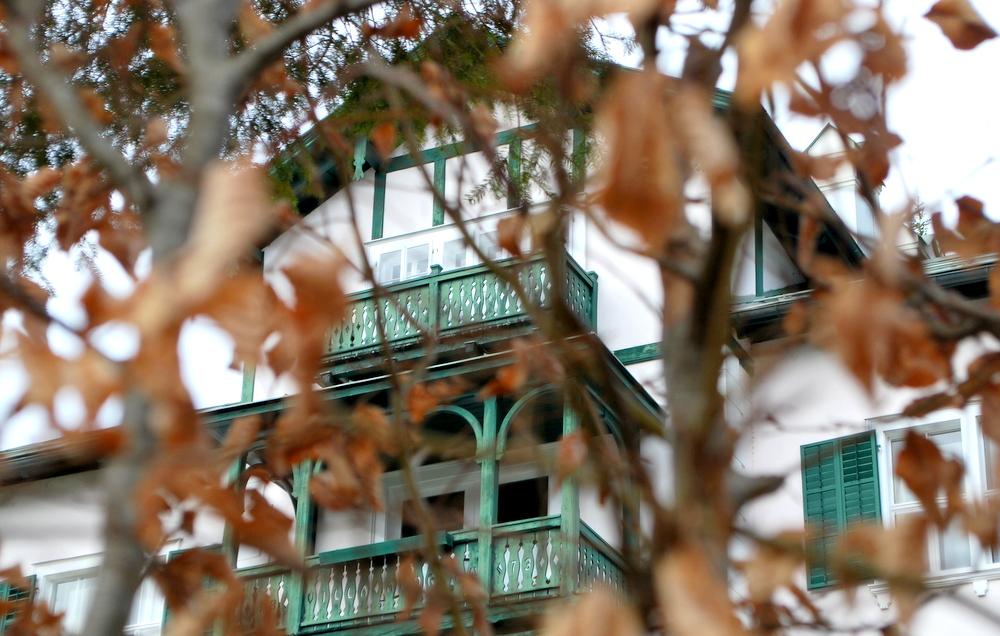 Altaussee-garteling-Gartenblog-Österreich-Cecerle-Uitz-gardening-