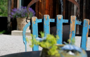 garteling-gartenblog-ulli-cecerle-uitz-gardening-wiesergutgarteling-gartenblog-ulli-cecerle-uitz-gardening-wiesergut