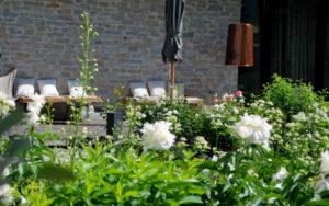 garteling-gartenblog-ulli-cecerle-uitz-gardening-wiesergut