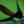Kampf gegen Schnecken: Was hilft wirklich? Eine Expertenmeinung.